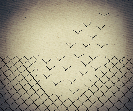 Metallic wire mesh transform into flying birds. Old paper, vintage background Stockfoto