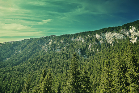 ramble: Beautiful landscape of valley in Carpathian mountains. Illustration of majestic picturesque view at sunrise