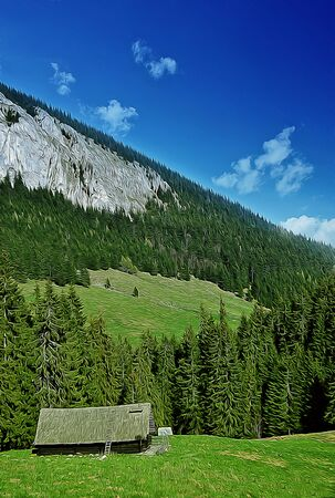 mountain meadow: Illustration of spring mountain valley with a lone house in the middle of a fir forest. Sunny day, green meadow and white mountain peaks