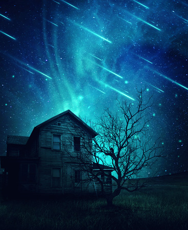 thrill: A ghost, haunted house and a scary tree in the meadow below a cold dark blue sky. Spooky landscape with a starry night sky background and fallen comets.
