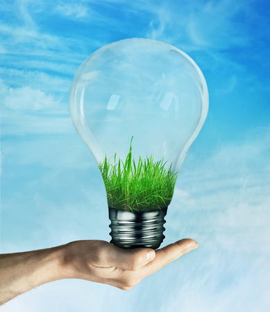 growing inside: Human hand holding a light bulb, with green grass growing inside, on blue sky background. Energy saving concept, environmental friendly ecology.