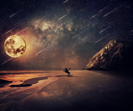 falling tide: Young man riding a wild horse near the seaside in a starry night with a full moon and falling stars. New lands discovery, adventure and friendship concept.