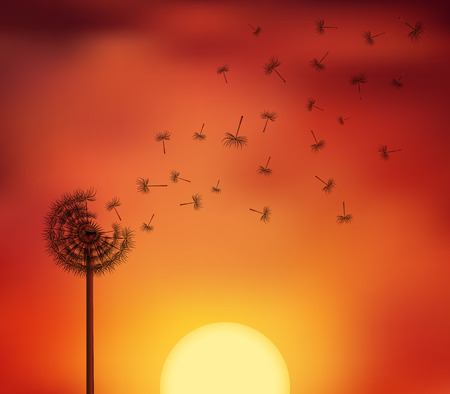Silhouettes of seeds escape from a dandelion flower on the twillight sky. Vector illustration symbolizing a breaking free, life journey concept.