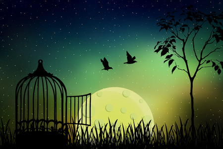 Birds couple escape from a cage, released to nature. Beautiful and positive vector illustration with the full moon and a starry sky background. Freedom and togetherness concept.