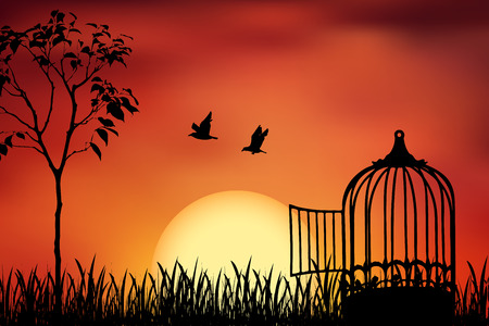 Birds couple escape from a cage, released to nature. Beautiful and positive vector illustration on a orange sunset background. Freedom and togetherness concept.