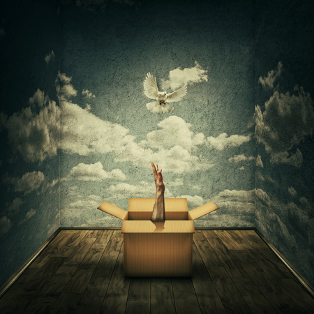 Surreal idea as a magical cardboard box opened and a mystic hand try to catch a pigeon escaping, surrounded by concrete walls with clouds texture as limitations. Freedom and liberation concept.