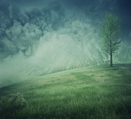 Mystycal mountain landscape with misty hills, green grass and a lone tree on the top. Beautiful and fresh background.