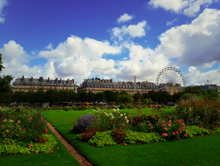 Summer Tuileries garden in front of Louvre palace in Paris, France.