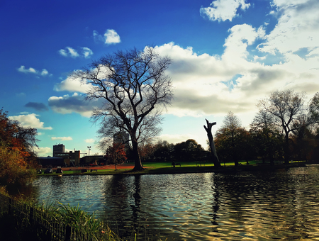 Autumn scene with bare trees near lake in Abbey Park, Leicester, United Kingdom. Stock Photo