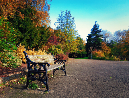 Wooden bench in Leicester Abbey Park in a sunny autumn day. Colorful trees and blue sky. Stock Photo