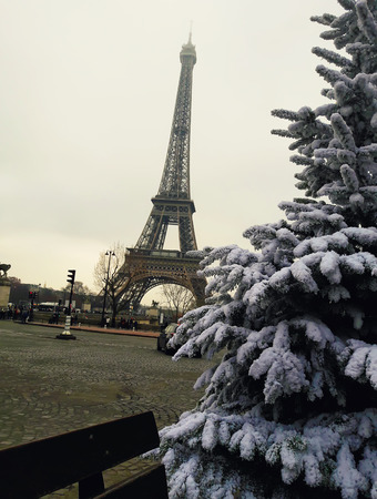 Snow covered fir branches, christmas tree close up in front of Eiffel Tower in Paris, France. Zdjęcie Seryjne - 119620341