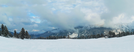 Beautiful panorama winter Pirin mountains above the clouds with snowy fir trees and mount peaks in Bansko, Bulgaria. Zdjęcie Seryjne - 119620441