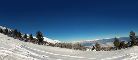 Snow mountains landscape panorama in bulgarian ski resort Bansko, clear blue sky and fir forest. Zdjęcie Seryjne