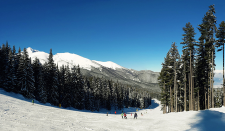 Scenic view of group of skiers on Bansko ski slope with blue sky background. Pirin mountains, Bulgaria.