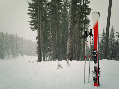 Pair of red ski equipment in snow surrounded by fir tree forest near slope. Winter mountains resort, holiday vacation trip and skiing sport concept.