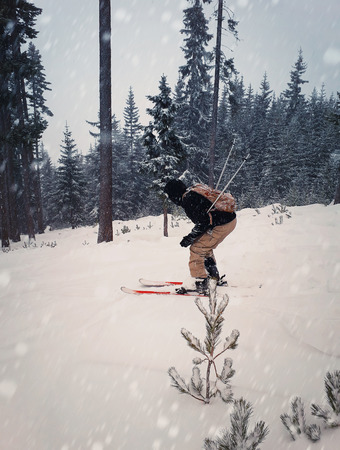 Skier skiing downhill during snowy day in high mountains between fir forest trees. Fast freeride winter sport. Zdjęcie Seryjne