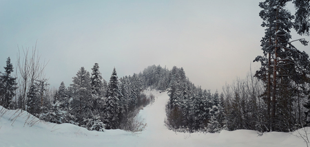 Ski slope among fir forest in the mountains. Beautiful natural panorama cloudy sky. Zdjęcie Seryjne - 119620399