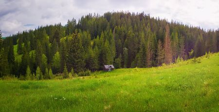 Scenic view of Carpathian mountains nature, an old house on the valley surrounded by coniferous forest on the hills. Sunny spring day with green grass and flowering meadows in Yablunytsya, Ukraine.