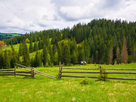 Picturesque spring mountains scene with wooden split rail fence across a green and lush pasture with a old house on the valley surrounded by coniferous woods.