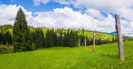Typical Carpathians village landscape. Old fence made of wood pillars and barbed metallic wire across the farm on the green hills surrounded by coniferous forests in a sunny spring day. 스톡 콘텐츠