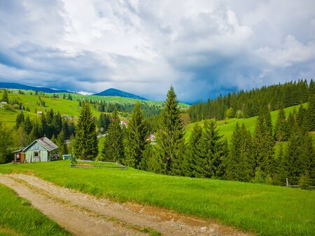 Scenic view of a cuontry road leading to an old village of wooden cabins on the hills of Ukraine Carpathians. Sunny spring day with green grass, flowering meadows and evergreen forests. 스톡 콘텐츠