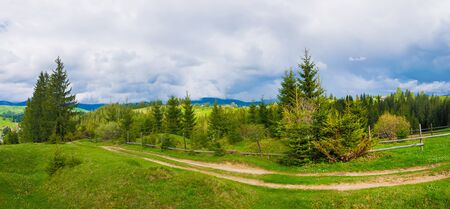 Picturesque spring Carpathians panoramic scene with wooden split rail fence across a green and lush pasture surrounded by coniferous forests.