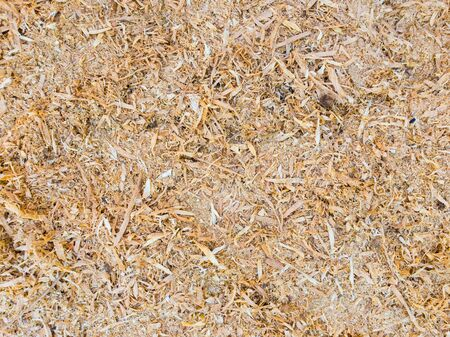 .Abstract sawdust or wood dust texture background. Close up top view of dry wood shavings, industry concept.