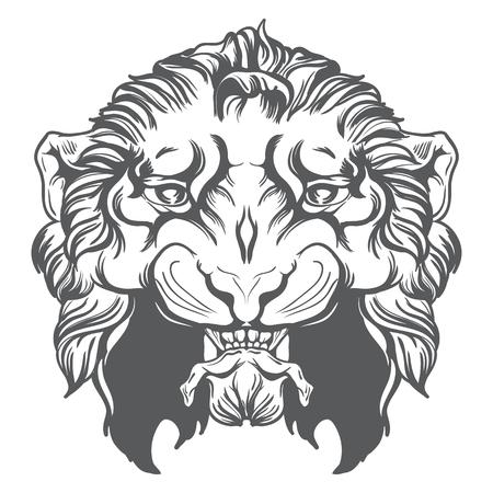 Tiger head vector illustration. Vector