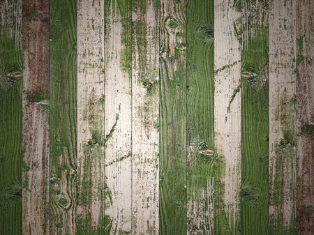 Green wood walls and floor for background