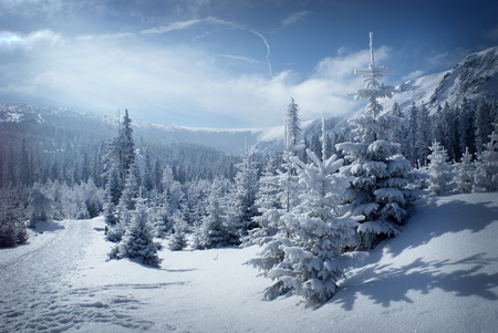 Morning mountain scenery with blue sky