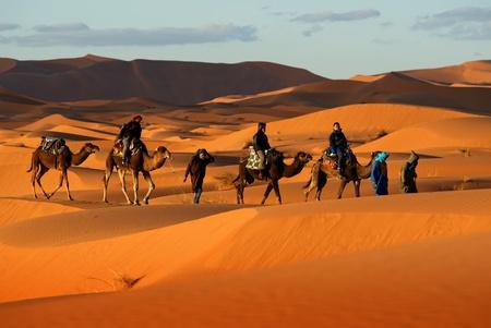 砂漠の砂丘を通って行くラクダのキャラバン