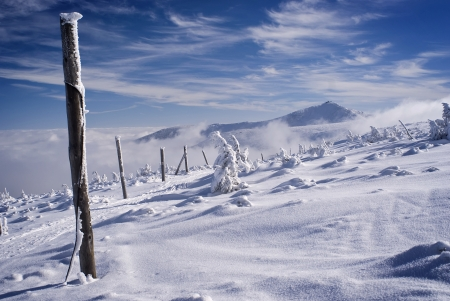 Winter scenery with blue sky  Snowy ridge with highest mountain in central europe  photo