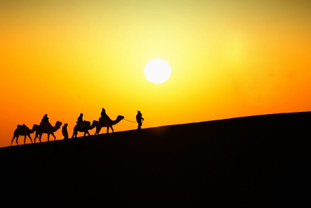Silhouette of a group of touristes on a trip at the sunset on a dune of Sahara desert. Stock Photo