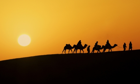 Silhouette of a camel caravan in the desert of Sahara at sunset  Travel >> Africa >> Morocco