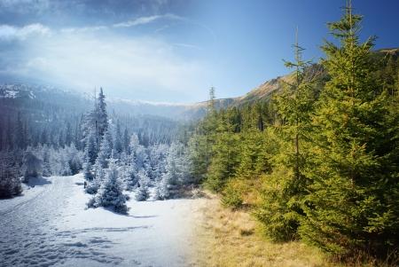 谷の 2 シーズンでインター レースの美しい山の風景