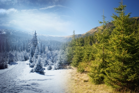 Beautiful mountain scenery with valley interlaced by two seasons   Stock Photo