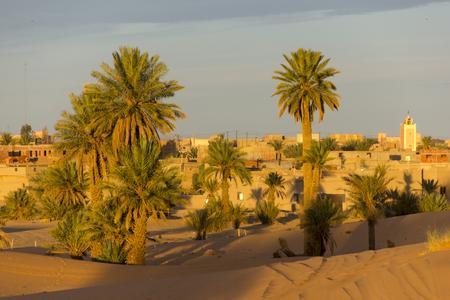 fata morgana: Some palms on the edge of the village of Merzouga in Morocco Stock Photo
