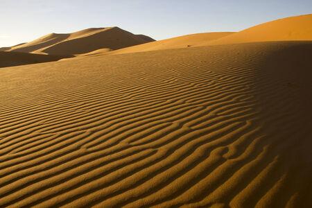 erg chebbi: Saharan Erg Chebbi near Merzouga village in Morocco. Wrinky surface of a sandy dune made by wind.