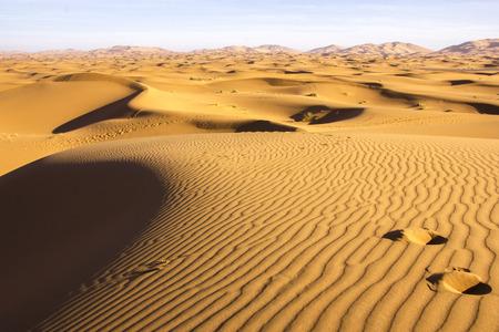 southeastern: Traces on the crest of a dune in Saharan Erch Chebbi desert near Merzouga in southeastern Morocco.