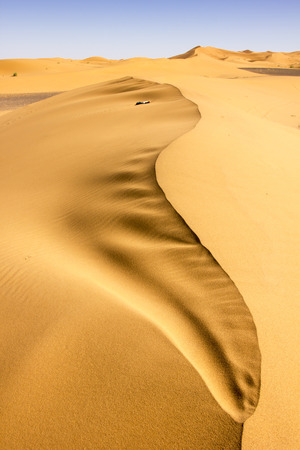 On the crest of a dune in Erg Chebbi desert in Morocco.