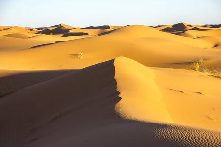 erg chebbi: Seas of dunes during sunset in Erg Chebbi in Morocco