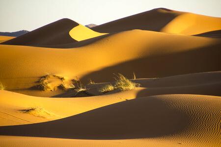 mares: Los grandes mares de dunas durante la puesta de sol en Erg Chebbi cerca de Merzouga en Marruecos