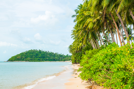 Tropical beach Lipa Noi with palms in the Koh Samui Island in Thailand