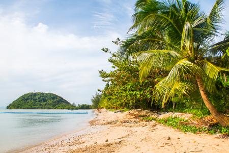 Tropical beach Laem Yai with palms in the Koh Samui Island in Thailand