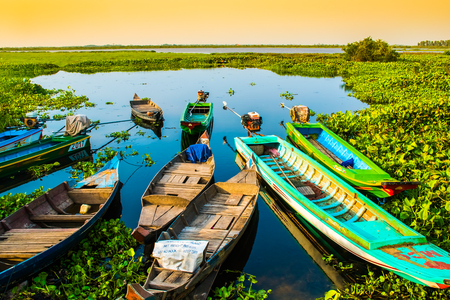 Alone beautiful colorful boats on lake, Lotus Farm, Phnom Krom in Cambodia
