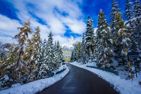 Winter road and trees with snow and alps landscape in Dolomity, Italy