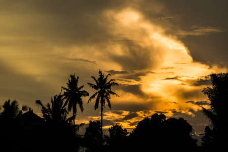 Vibrant sunset with silhouette of palm trees in countryside of the Bali Island in Indonesia Stock Photo