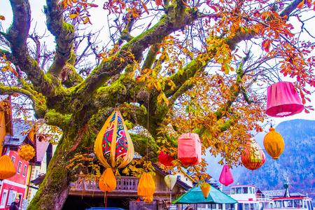 Rote und orangefarbene Lampions auf dem Herbstbaum, Hallstatt, Unesco in Österreich