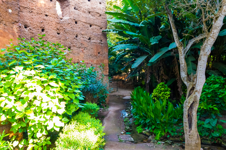 Garden of the ancient necropolis of Kellah Chellah in the city of Rabat, Morocco in Africa
