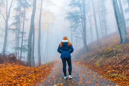 Autumn landscape with trees and fog with walking girl silhouette, Czech Republic, Europe Stock Photo